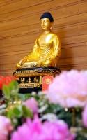 6/2012 Medicine Buddha Ceremony Gallery