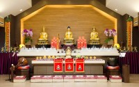 5/2014 Buddha's 3041st Birthday Celebration & Gratitude Medicine Buddha Ceremony